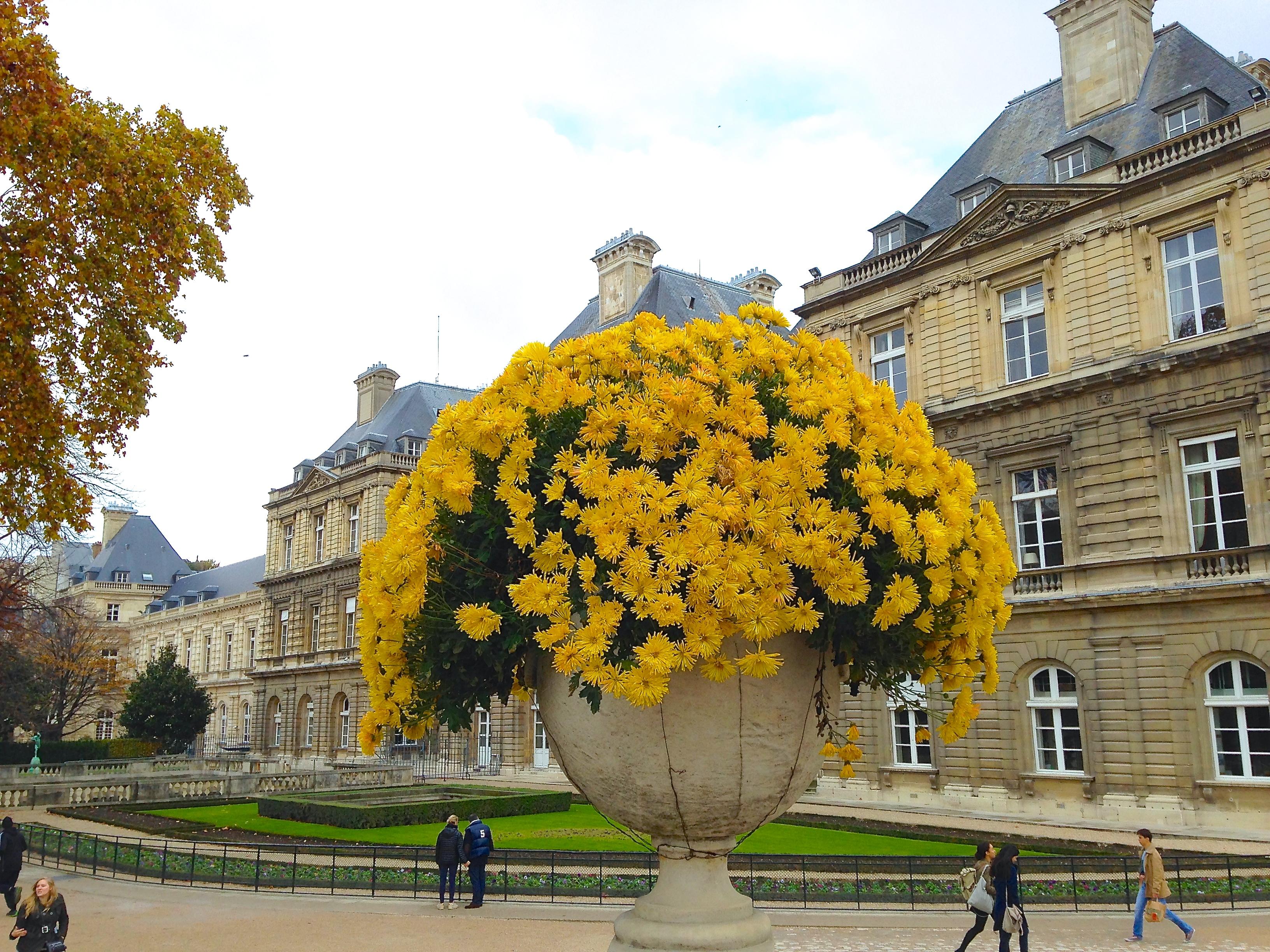 Jardin du luxembourg livro de viagens for Jardines de luxemburgo paris